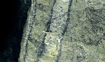 image: Serpentinite