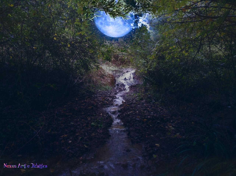 image: Ruscello e Luna dal monte Vitalba