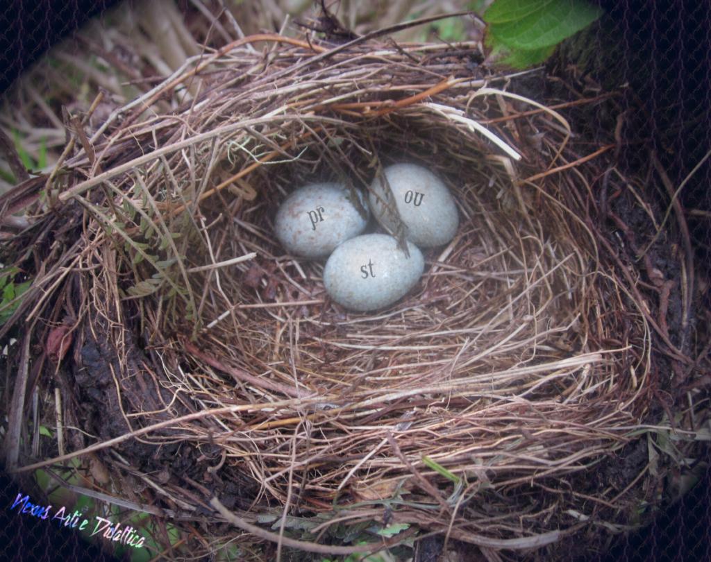 image: Proust's nest