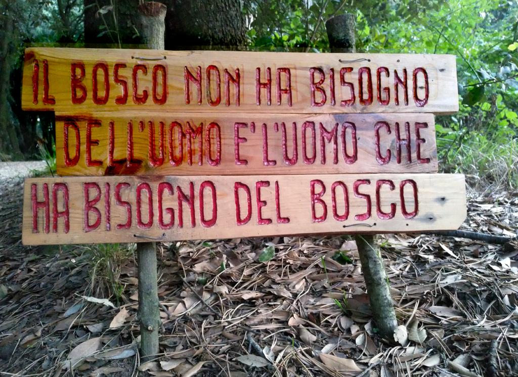 image: il bosco non ha bisogno dell'uomo
