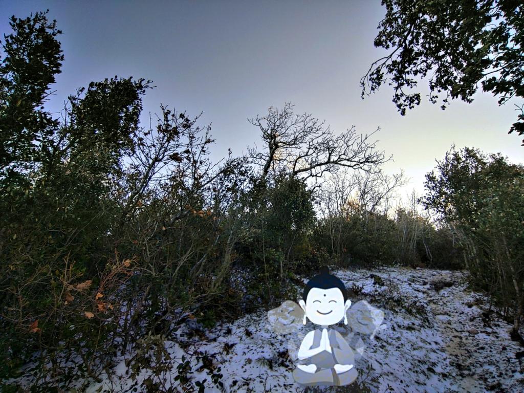 image: Meditando sulla neve