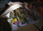 Garbage 20200926_221930.jpg