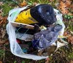 Garbage 20201003_174005.jpg