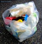 Garbage 20210206_164238.jpg