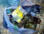 Garbage 20210710_003017.jpg