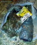 Garbage 20210710_003056.jpg